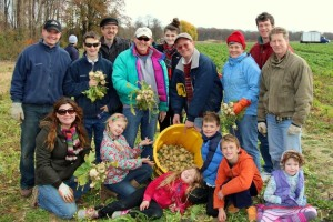 StVFamilies_Gleaning